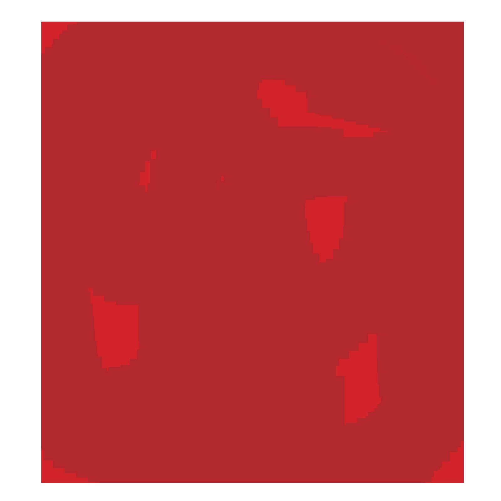 Catholic University of America Press